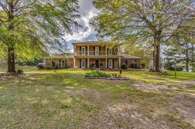 114 Lakeview Rd, Brandon, MS 39047 (MLS #315995) :: RE/MAX Alliance