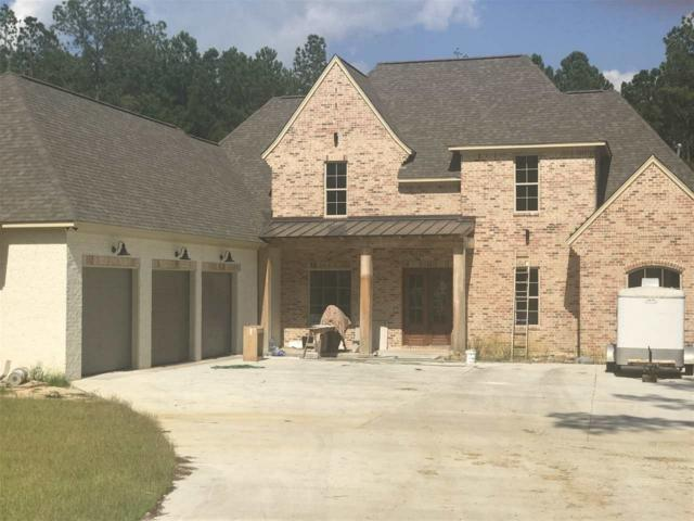 505 Durango Dr, Brandon, MS 39047 (MLS #317427) :: RE/MAX Alliance