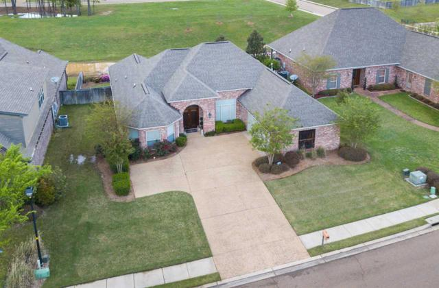 319 Gladeview Pl, Brandon, MS 39047 (MLS #318563) :: RE/MAX Alliance