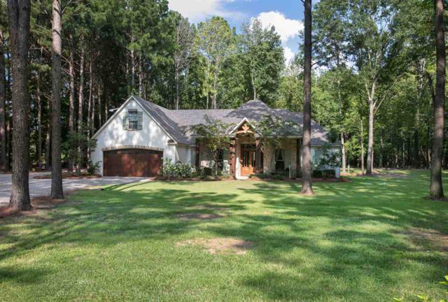 308 Lakeshire Pkwy, Canton, MS 39046 (MLS #322459) :: RE/MAX Alliance