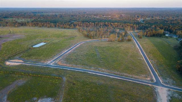Lot 48 Mulberry Dr #48, Brandon, MS 39047 (MLS #323875) :: Exit Southern Realty