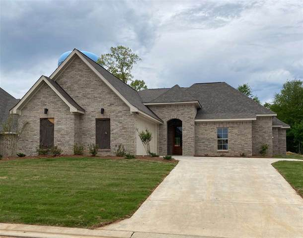137 Coventry Ln, Brandon, MS 39042 (MLS #326538) :: RE/MAX Alliance