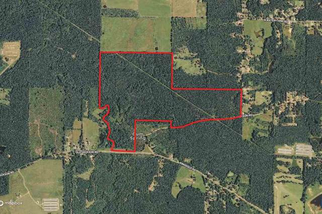 Old Jackson Rd, Forest, MS 39074 (MLS #326900) :: RE/MAX Alliance