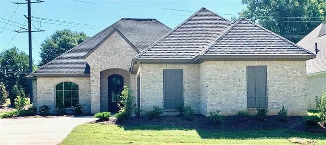 104 Cornerstone Dr, Madison, MS 39110 (MLS #329174) :: Three Rivers Real Estate