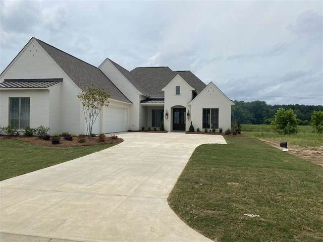 224 Reservoir Way, Brandon, MS 39047 (MLS #329947) :: Three Rivers Real Estate