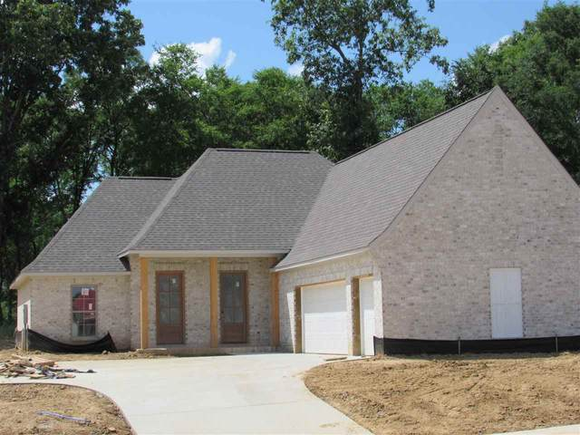 110 Shore View Dr, Madison, MS 39110 (MLS #330590) :: Three Rivers Real Estate
