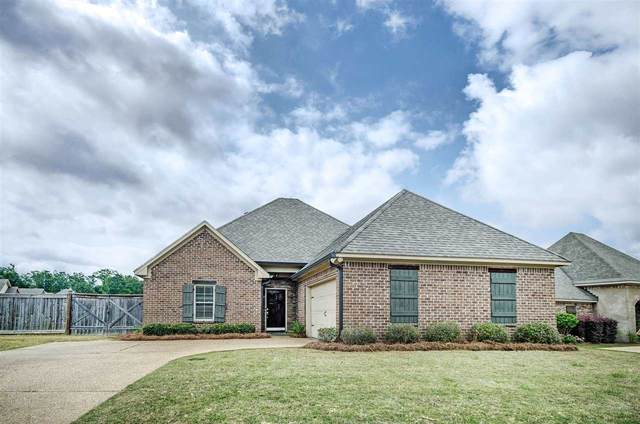 139 Grace Dr, Flowood, MS 39232 (MLS #330631) :: Three Rivers Real Estate