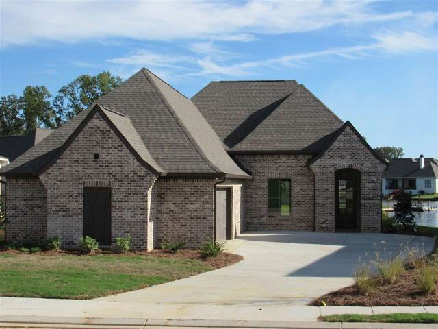119 Shore View Dr, Madison, MS 39110 (MLS #331143) :: RE/MAX Alliance