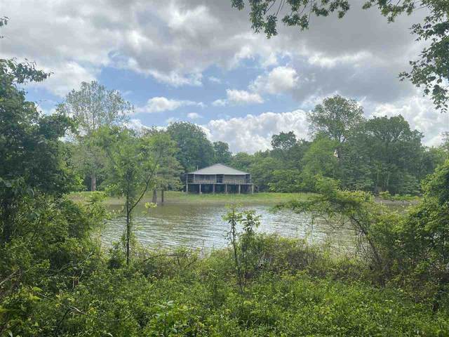 0 Thompson Rd, DUNDEE, MS 38626 (MLS #331148) :: RE/MAX Alliance