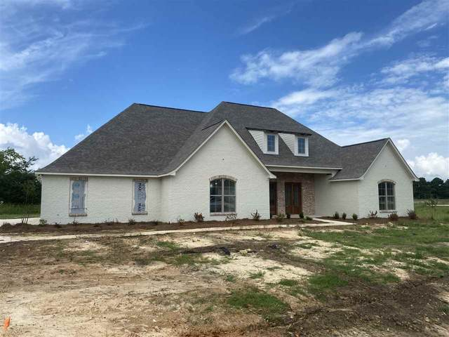 118 Anchor Ln, Brandon, MS 39047 (MLS #331320) :: Exit Southern Realty