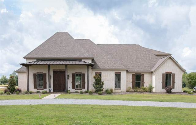 181 Crossview Pl, Brandon, MS 39047 (MLS #331740) :: Exit Southern Realty