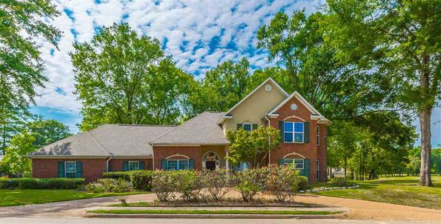801 Champion View, Canton, MS 39046 (MLS #333174) :: Exit Southern Realty