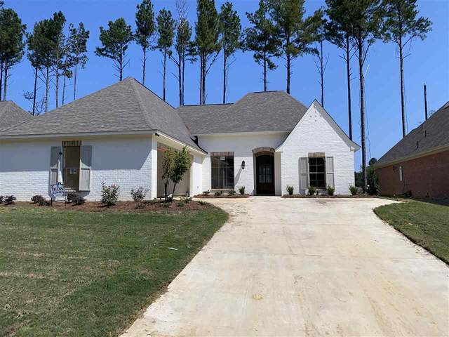 1306 Ballast Way, Brandon, MS 39047 (MLS #333240) :: Exit Southern Realty