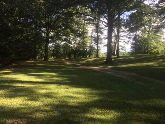 1758 Lisa Ln Lot 7, Terry, MS 39170 (MLS #333729) :: Mississippi United Realty
