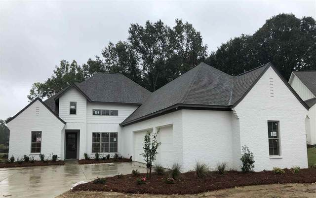 310 Wellstone Place, Madison, MS 39110 (MLS #334243) :: Mississippi United Realty