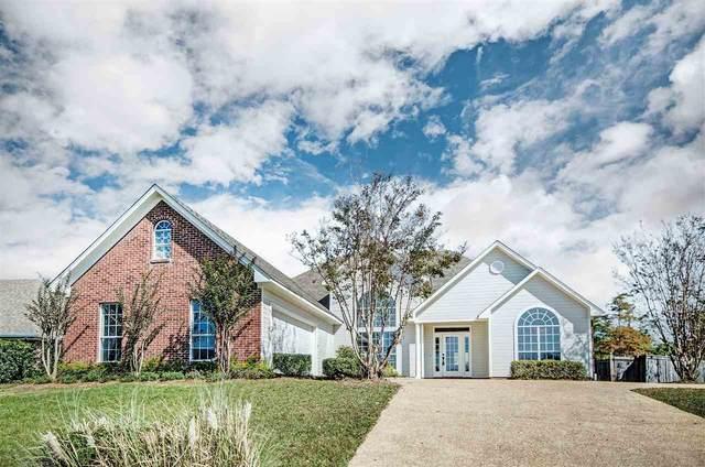 546 Eastside Cv, Brandon, MS 39047 (MLS #334574) :: Mississippi United Realty
