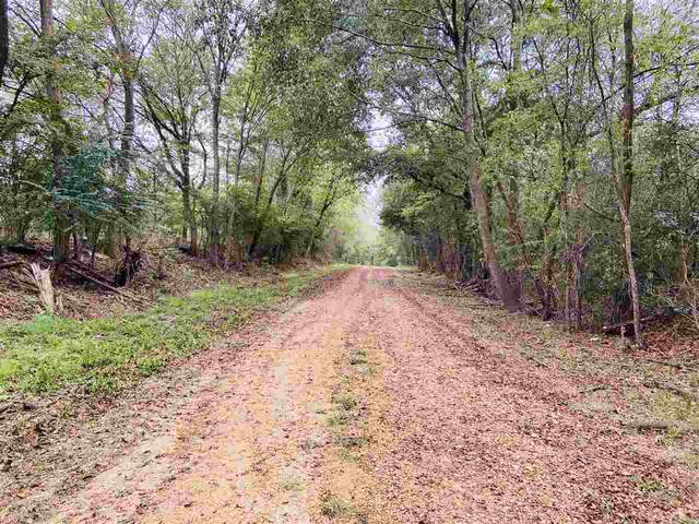 1555 Hwy 51 1 & 2, Madison, MS 39110 (MLS #334576) :: List For Less MS