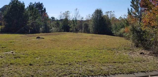 Meadow Dr A1 Brookwood Me, Jackson, MS 39272 (MLS #336249) :: eXp Realty