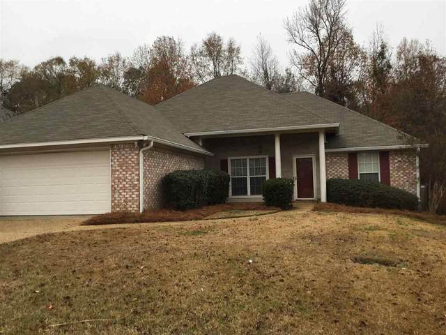 432 Wildberry Cir, Pearl, MS 39208 (MLS #336712) :: eXp Realty