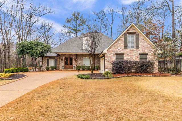 252 Sycamore Ln, Madison, MS 39110 (MLS #337441) :: eXp Realty