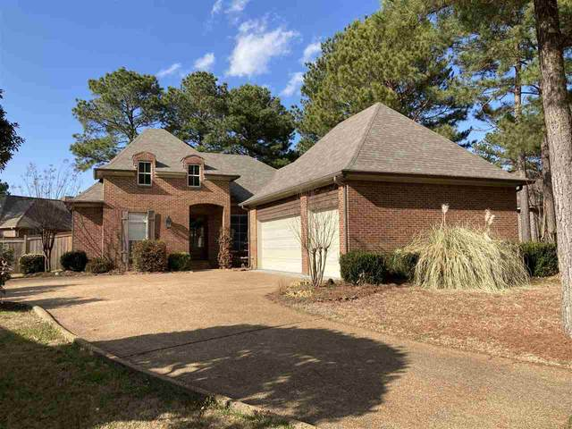 107 Elm Ct, Madison, MS 39110 (MLS #337709) :: eXp Realty