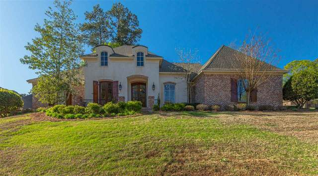 524 Silverstone Dr, Madison, MS 39110 (MLS #339057) :: eXp Realty