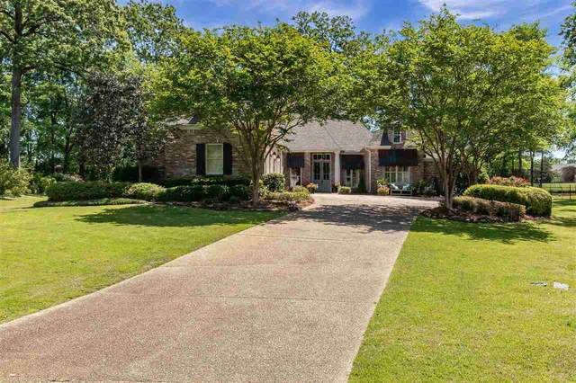 104 Willowood Cv, Madison, MS 39110 (MLS #339850) :: eXp Realty