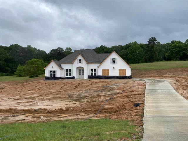 324 Driftwood Ln, Florence, MS 39073 (MLS #339922) :: eXp Realty