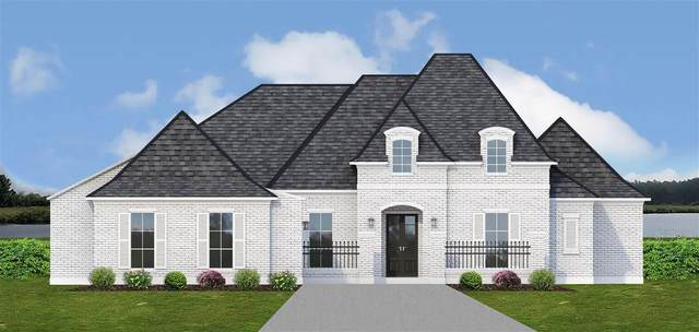 182 Reunion Dr, Madison, MS 39110 (MLS #343058) :: eXp Realty