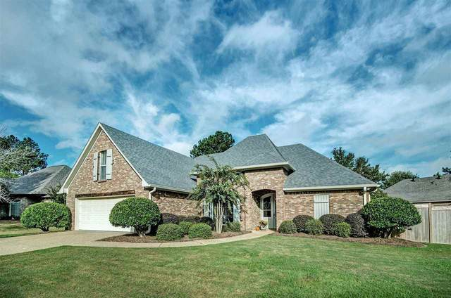 159 French Branch, Madison, MS 39110 (MLS #344613) :: eXp Realty