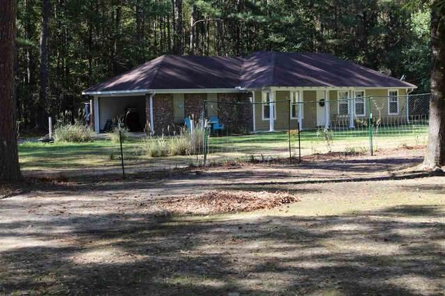 1048 Coal Bluff Rd, Lena, MS 39094 (MLS #345071) :: eXp Realty