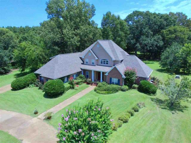 302 Renees  Way, Madison, MS 39110 (MLS #311497) :: RE/MAX Alliance