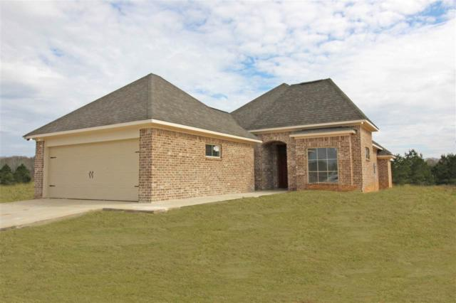 300 Candlewood Ct, Canton, MS 39046 (MLS #314484) :: RE/MAX Alliance