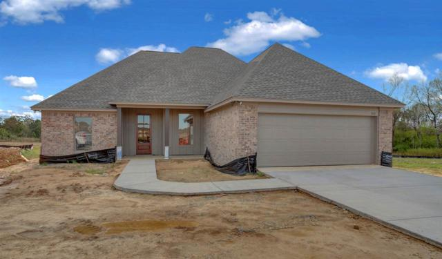 308 Candlewood Ct, Canton, MS 39046 (MLS #317213) :: RE/MAX Alliance