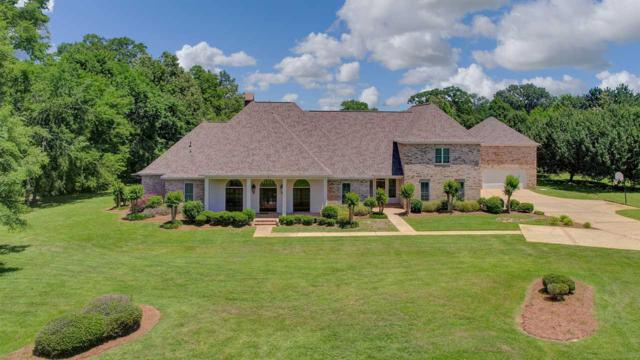 702 Tanglewood Dr, Madison, MS 39110 (MLS #320353) :: RE/MAX Alliance