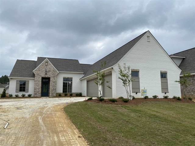 221 Reservoir Way, Brandon, MS 39047 (MLS #327628) :: List For Less MS