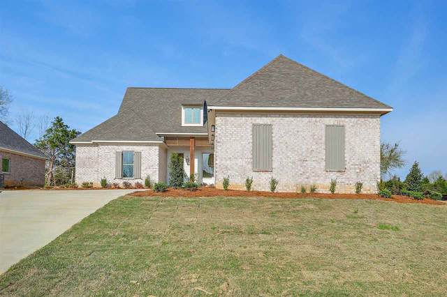 113 Coventry Ln, Canton, MS 39046 (MLS #327756) :: Mississippi United Realty