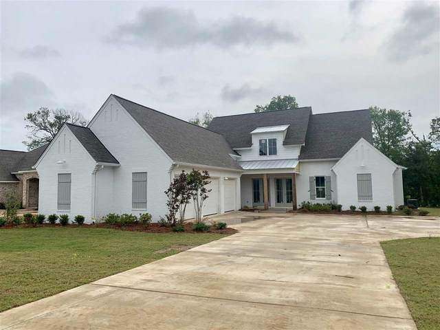 118 Coventry Ln, Canton, MS 39046 (MLS #328545) :: Three Rivers Real Estate