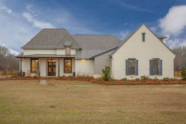 127 Crossview Pl, Brandon, MS 39047 (MLS #328653) :: Exit Southern Realty