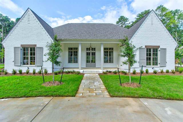 804 Wild Horse Way, Flowood, MS 39232 (MLS #328846) :: Exit Southern Realty