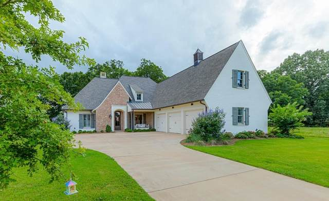 195 Welchshire Dr, Madison, MS 39110 (MLS #341757) :: eXp Realty