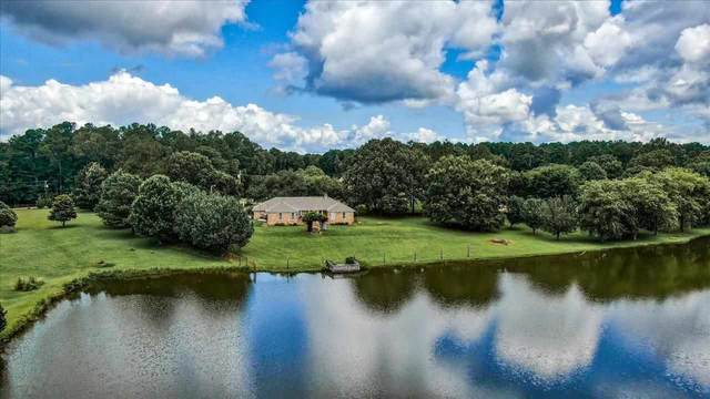 120 Countryside Dr, Brandon, MS 39047 (MLS #342599) :: eXp Realty