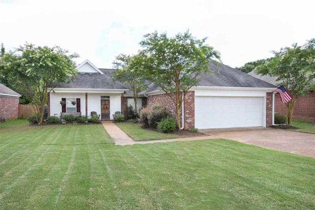 538 Will Dr, Brandon, MS 39047 (MLS #320658) :: RE/MAX Alliance