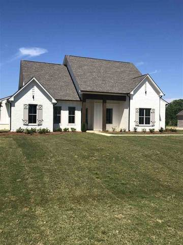 130 Anchor Ln, Brandon, MS 39047 (MLS #326857) :: List For Less MS