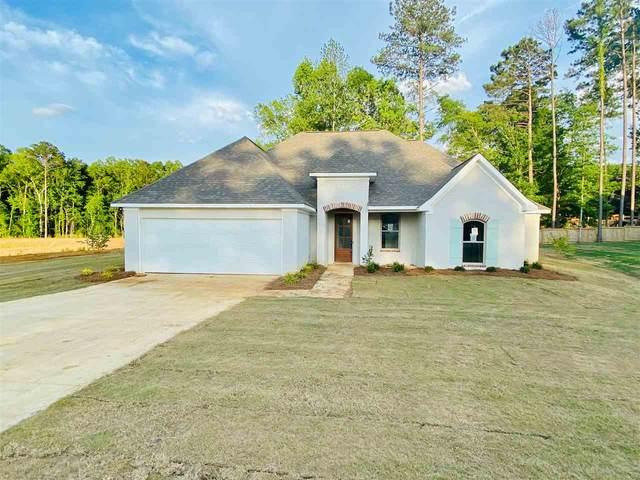 230 Terrapin Creek Rd, Brandon, MS 39042 (MLS #329609) :: List For Less MS