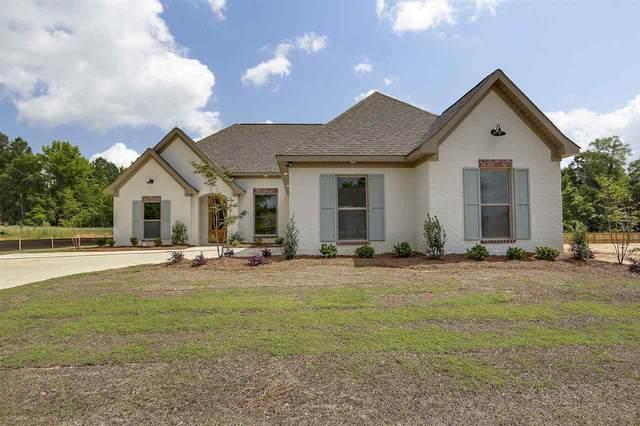 179 Cornerstone Dr, Brandon, MS 39042 (MLS #329267) :: Three Rivers Real Estate