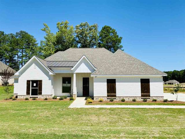 227 Terrapin Creek Rd, Brandon, MS 39042 (MLS #329578) :: Exit Southern Realty