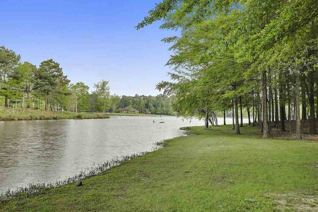 929 Easterly Dr, Brandon, MS 39042 (MLS #329299) :: Exit Southern Realty