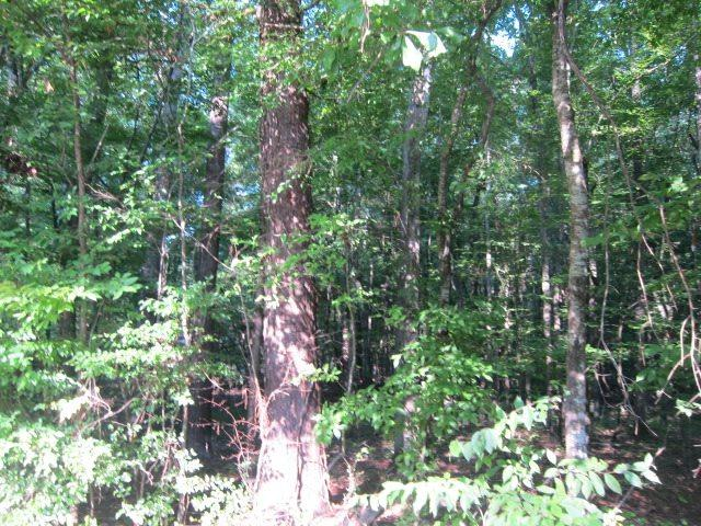 0 Pinedale Rd, Terry, MS 39170 (MLS #278182) :: Three Rivers Real Estate