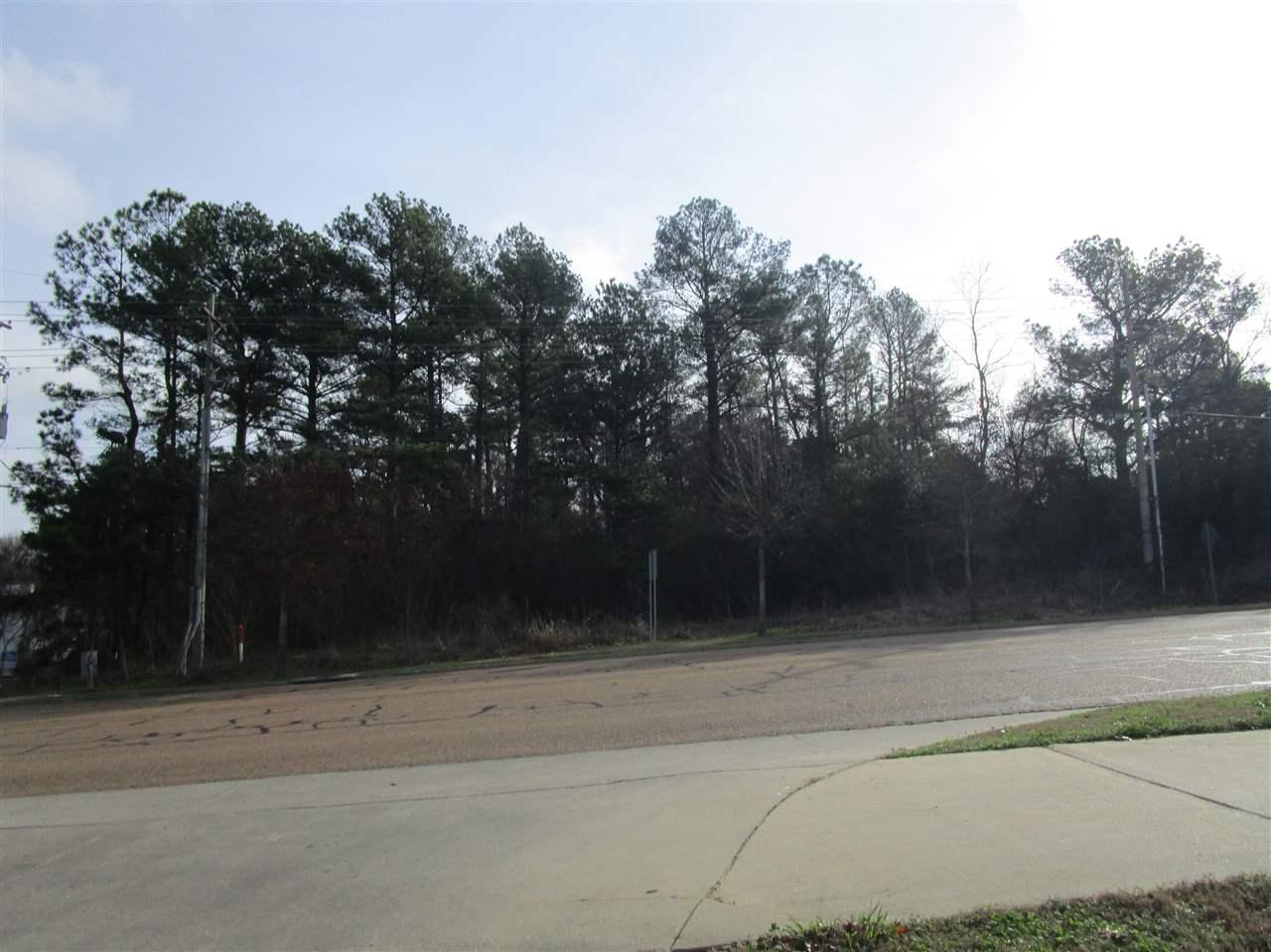 7045 Old Canton Rd - Photo 1